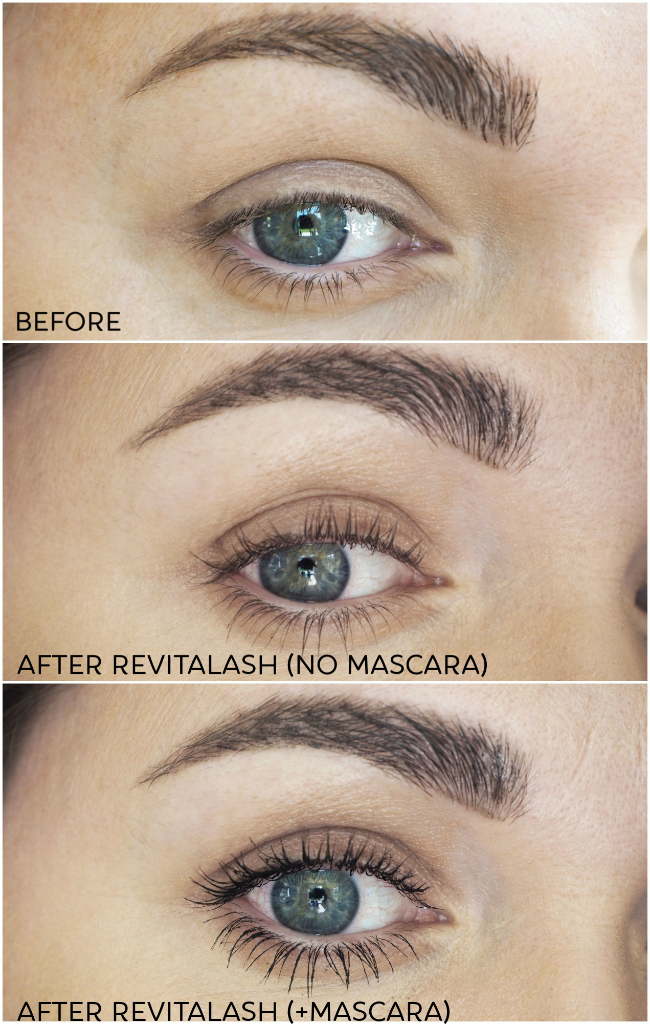 revitalash before and after